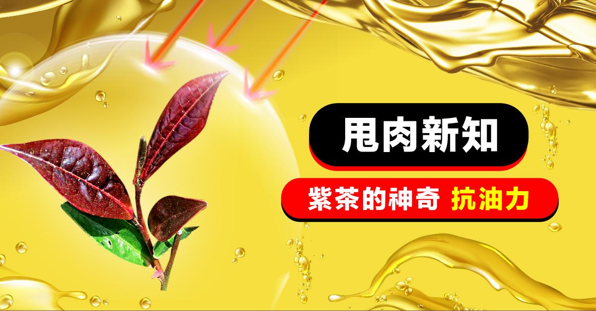 「紫茶」的神奇抗油力,讓甩肉事半功倍!